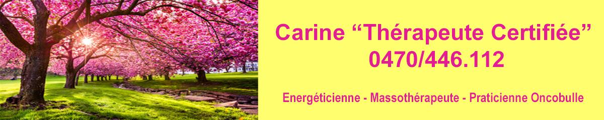 Soins Energétiques  logo